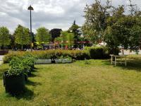 Czy warto odwiedzić Ogród Wola?