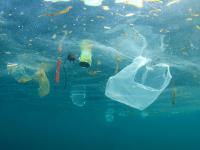 Wyłowili ponad 40 ton plastiku z Oceanu Spokojnego
