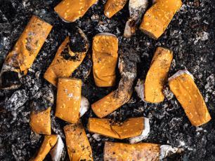 Nikotyna, czyli trucizna o wieloznacznych właściwościach
