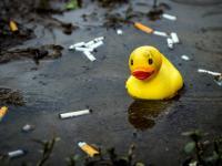 Niedopałki papierosów gorsze niż plastikowe słomki