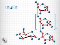 Inulina – właściwości, działanie i zastosowanie inuliny