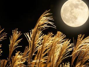 W piątek 13. czeka nas wyjątkowa pełnia Księżyca