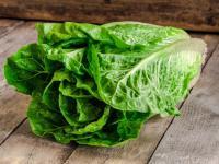 Sałata rzymska warzywo - właściwości, witaminy i wartości odżywcze sałaty rzymskiej