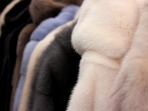 Kalifornia zakazuje sprzedaży futer