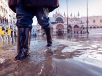 Wenecja pod wodą! To największa powódź od 50 lat