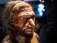 """Prehistoryczni ludzie nauczyli się uśmiechać """"by uprawiać sex"""""""