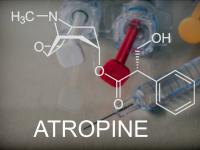 Atropina – właściwości, działanie i zastosowanie atropiny