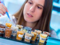 Żywność funkcjonalna – właściwości, działanie i rodzaje żywności funkcjonalnej