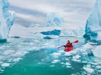 Klimat zmienia oblicze Antarktydy