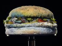 Spleśniały hamburger ma zachęcić do jedzenia