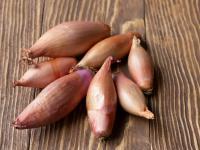 Cebula szalotka – dlaczego warto włączyć ją do codziennej diety?