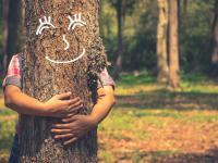 Przytulaj drzewa zamiast ludzi