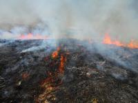 Biebrzański Park Narodowy nadal płonie