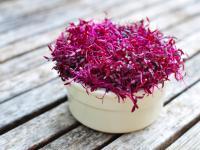 Kiełki amarantusa – różowe źródło witamin i minerałów