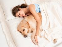 Kobiety śpią lepiej obok psów niż ludzi
