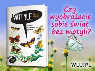 Poznajcie pasjonujący świat motyli