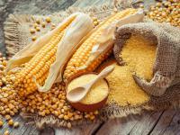 Otręby kukurydziane – spożywać, ale z umiarem!