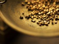 Złoto (Au) - właściwości, działanie i występowanie złota