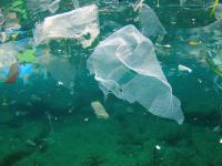 Mikroplastik w Oceanie Atlantyckim może ważyć 21 milionów ton