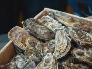 Ostrygi całe jako towar na sprzedaż. Źródło: shutterstock