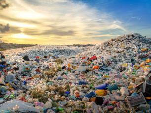 Nowy superenzym zjada plastikowe butelki w ekspresowym tempie
