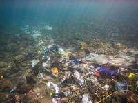 Na dnie oceanu może znajdować się ponad 14 milionów ton plastiku