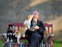Psy są najstarszymi towarzyszami ludzi!