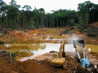 Wylesianie w brazylijskiej Amazonii osiąga najwyższy od 12 lat poziom