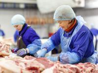 Światowy przemysł spożywczy przyczynia się do szybkiej utraty siedlisk