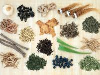 Co to są adaptogeny? Poznaj rośliny, które redukują stres!