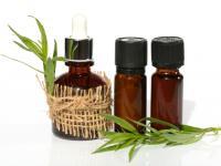 Trucizna, która leczy? Co wiemy o olejku estragonowym