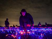 Tańczące światła zmniejszają zużycie pestycydów o 50%