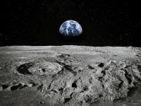 """""""Księżycowa Arka"""" może ochronić DNA milionów gatunków zwierząt i roślin"""
