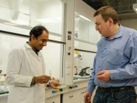 Naukowcy tworzą z wodorostów jadalne folie do pakowania żywności