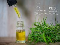 Czym jest olejek CBD? Czy to naprawdę działa? 5 korzyści z olejku CBD