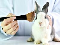 Setki kosmetyków w UE zawierają składniki testowane na zwierzętach