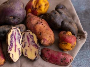 Najdziwniejsze warzywa na świecie