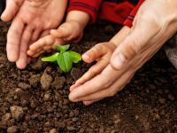 Czy ekologię można mieć w genach?