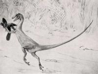 Dobry tata dinozaur