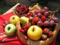Szybki rozwój rolnictwa ekologicznego