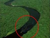 Wąż-olbrzym z Borneo