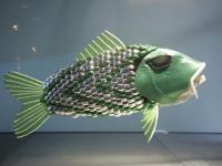 Ryba-robot zbada skażenie wód