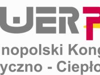 Rok 2009: Perspektywy rozwoju polskiej energetyki