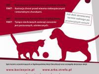Marzec miesiącem sterylizacji zwierząt