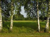 Dzień Leśnika i Drzewiarza