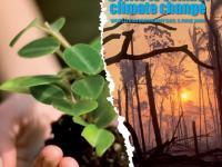 Światowy Dzień Ochrony Środowiska Naturalnego