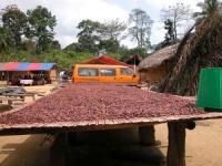 Znany batonik będzie fair trade