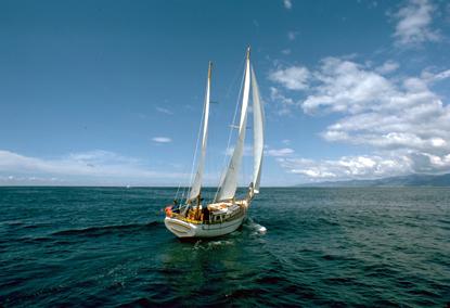 Jachty 36