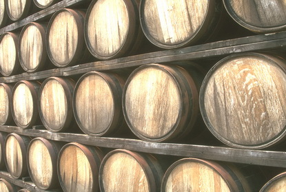 Winogrona i wino 27