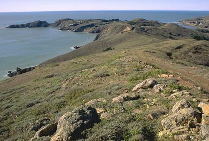 Wybrzeże Kalifornii 16